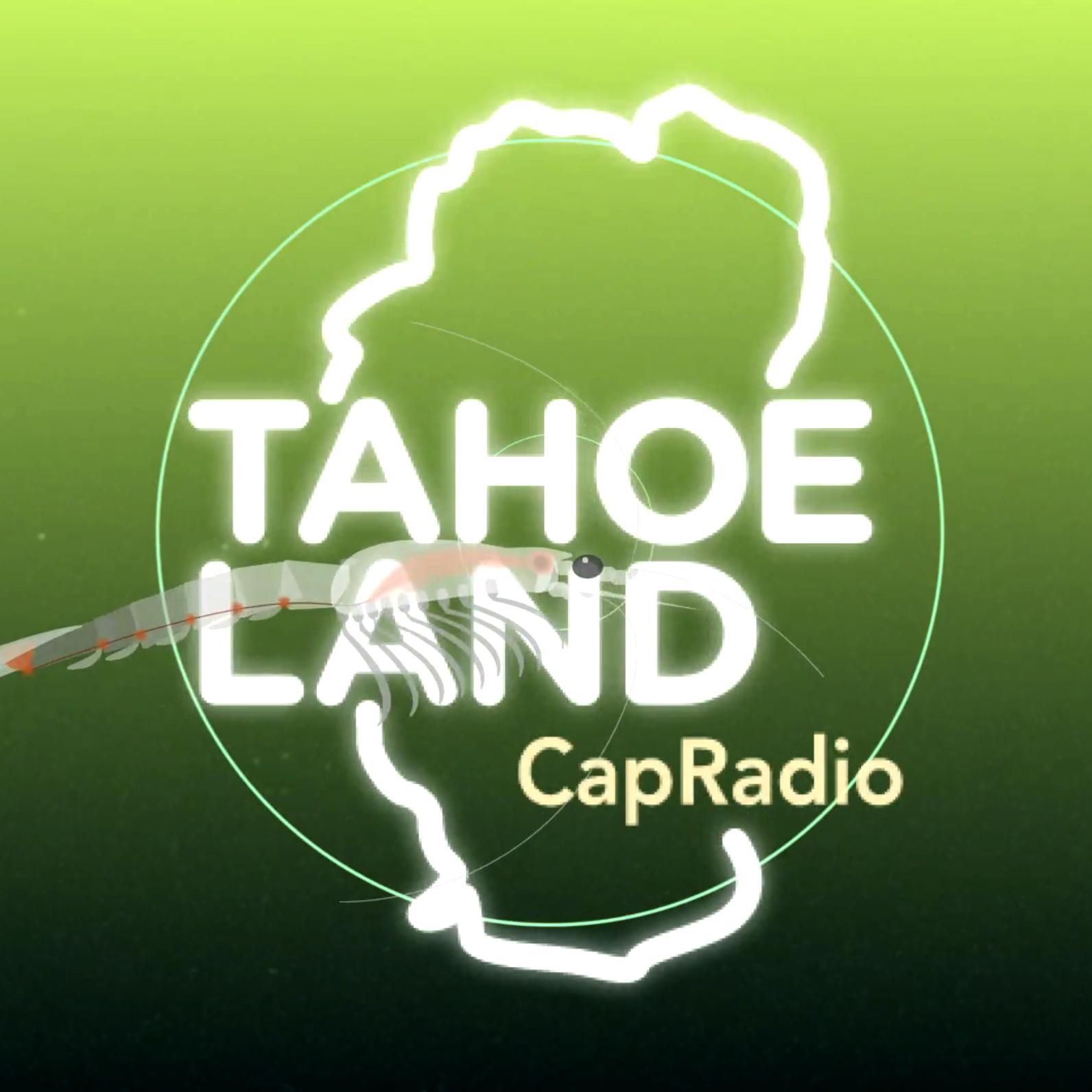 TAHOE LAND